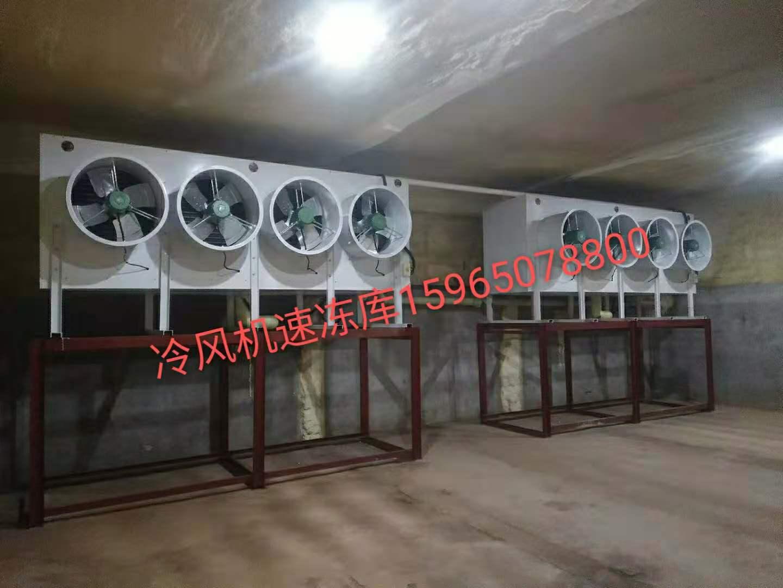 潍坊冷风机速冻库